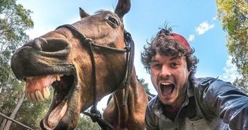 Не квоккой единой: «заклинатель зверей» ездит по миру и делает ужасно милые селфи с животными