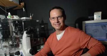 Обнаружен биомаркер, предсказывающий ответ натерапию паклитакселом
