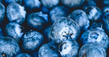 Top 10 Healthy Foods That Fight Stress