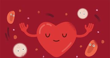 Капилляры, сердце, анемия: тест о кровеносной системе