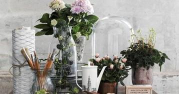 Цветы в интерьере: 5 оригинальных способов озеленить квартиру