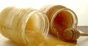 Важные факты омёде, которые вам нужно знать если выпосещаете ярмарки мёда
