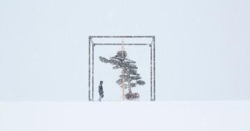 azuma makoto floats a tremendous pine tree above a snowfield in japan