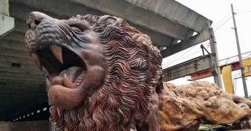 Com apenas uma árvore, Leão é esculpido por 20 pessoas e tem 14 metros de comprimento