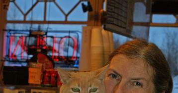 На Аляске умер кот, 20 лет занимавший пост мэра города