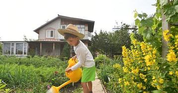 Закон о садоводстве и огородничестве 2017: Дачных товариществ не будет, но разрешат строить дома с пропиской