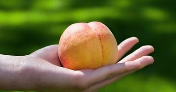 Мужчина купил один персик иторжественно вручил его кассирше…