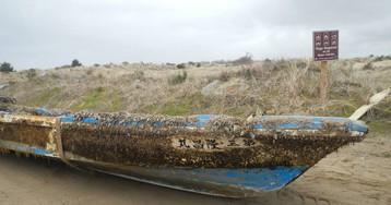 Tsunami de 2011 provoca uma das maiores migrações marinhas da história