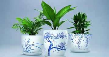 Plant pots made to kill mosquitos are decorated with tiny little dead mosquitos