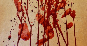 Scientists Shoot Human Heads Filled With Cow Blood for Science