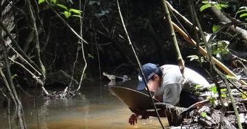 Россиянин рассказывает, как искал золото в джунглях Южной Америки