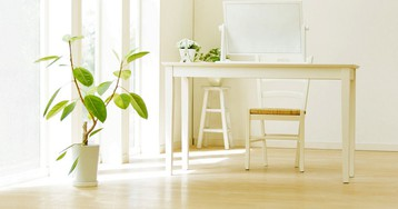 Как правильно выбирать растения для дома