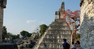 Lasers Reveal a Maya Civilization So Dense It Blew Experts' Minds