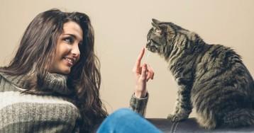 Искренняя дружба между котом ичеловеком