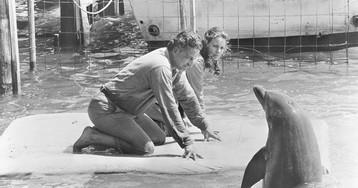 Step Aside, James Bond: The Strange Stories of Espionage Animals