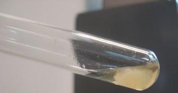 Постпред РФ при ОЗХО назвал источники происхождения отравившего Скрипаля вещества