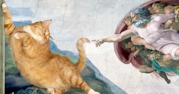 Заратустра на полотне Рафаэля: как рыжий кот из Петербурга оказался на шедеврах мирового искусства