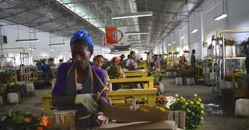 New Ethiopian Leader's Challenge: Unleash the Economy