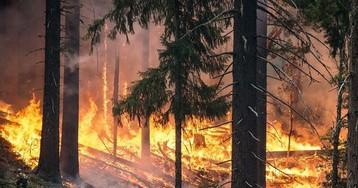 Пожары 2010 года могут повториться
