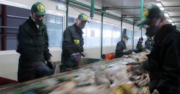 Названо, где в Подмосковье будут сжигать мусор. Почему это бессмысленно?