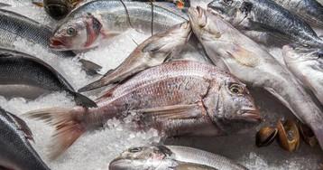 6 советов для покупки замороженной рыбы