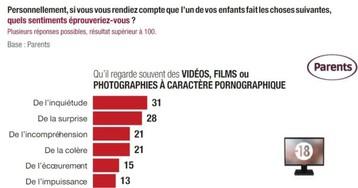 Addictions : le porno bientôt réglementé en France ?