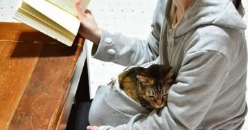 В кенгуруподобном худи вы можете не расставаться со своим котом