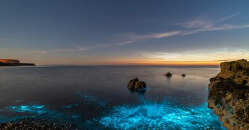 Incredible Bioluminescent Sea Sparkles Cause a Glowing Shore in Wales
