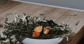 5 самых полезных трав для твоего здоровья