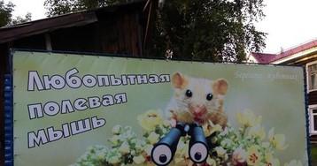 57-летний житель Барнаула ведет партизанскую войну с сауной и ее ночными гостьями