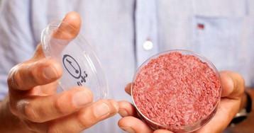 Merck e Bell Food Group passam a investir em carne de laboratório