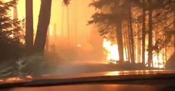 «Мы покойники»: видео страшного побега отца и сына сквозь горящий лес
