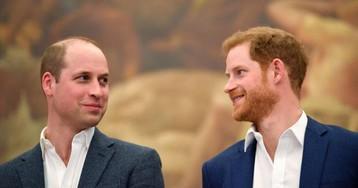 Кейт Миддлтон пропустит официальную поездку: почему Принц Уильям отправится в Африку сам