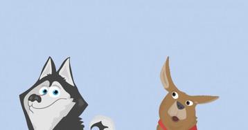 Храбрость охотничьей собаки