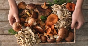 Грибы - кладезь витаминов и минералов. Разберемся, как приготовить, чтобы они не потеряли, а приумножили их содержание.