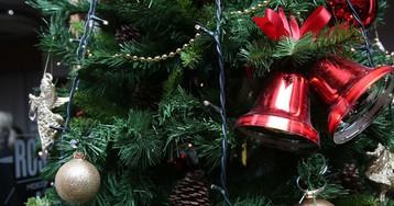 В Роскачестве дали советы по выбору новогодней елки