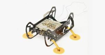 Ученые создали робота-таракана, способного бегать по стенам и потолку