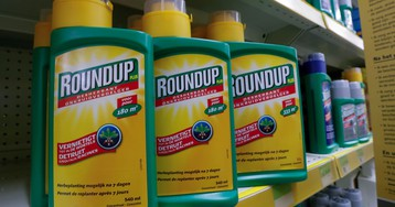 A plagiarism scandal rocking the EU centers on the safety of the weedkiller glyphosate
