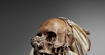 The Fight to Repatriate African Skulls in European Museum Collections