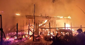 Fire at Florida wildlife sanctuary kills 33 animals, birds