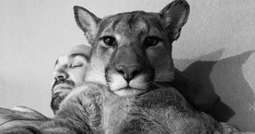 Russian Couple Documents On Instagram Their Daily Lives With Adopted Puma