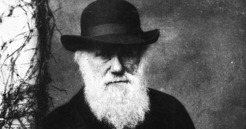 British school cancels musical about Darwin following complaints from parents