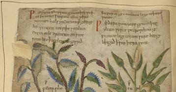 800 Medieval Illuminated Manuscripts from France and Britain Available Online