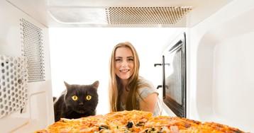 Микроволновая печь: помощник в хозяйстве или затаившийся убийца