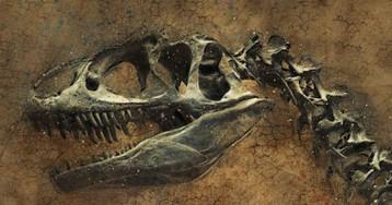 North Dakota killing field offers snapshot of Earth's last mass extinction