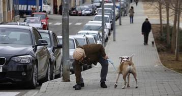 ADN canino para cazar a vecinos incívicos
