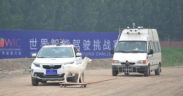 Want to know how well China's autonomous cars are driving? Ask California
