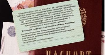 В России отменили бумажный СНИЛС. Что это значит и что делать?