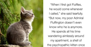 Cat Struggles With Identity Crisis After Receiving 20+ Nicknames