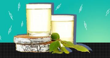 7 способов приготовить квас из берёзового сока